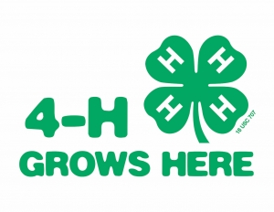 Two county 4-Hers headed to national events